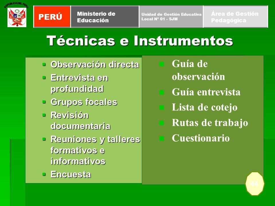 Técnicas e Instrumentos Observación directa Observación directa Entrevista en profundidad Entrevista en profundidad Grupos focales Grupos focales Revi