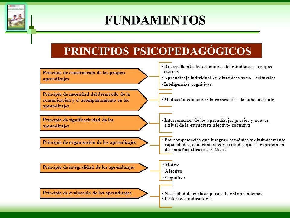 Principio de construcción de los propios aprendizajes PRINCIPIOS PSICOPEDAGÓGICOS Principio de necesidad del desarrollo de la comunicación y el acompa