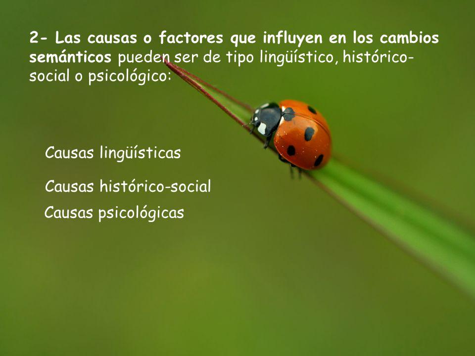 2- Las causas o factores que influyen en los cambios semánticos pueden ser de tipo lingüístico, histórico- social o psicológico: Causas lingüísticas Causas histórico-social Causas psicológicas