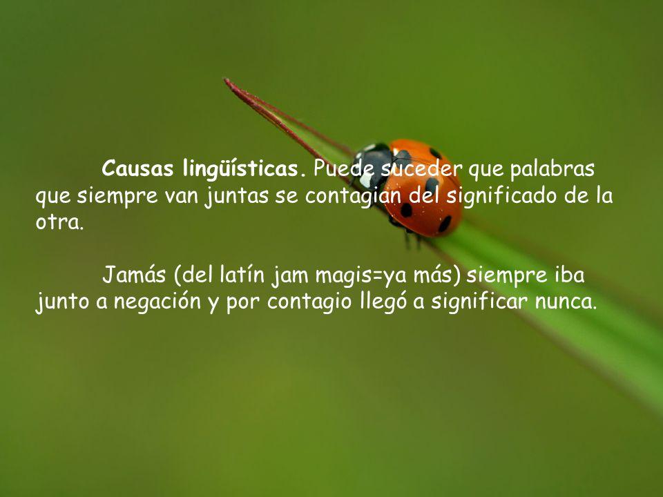 Causas lingüísticas. Puede suceder que palabras que siempre van juntas se contagian del significado de la otra. Jamás (del latín jam magis=ya más) sie