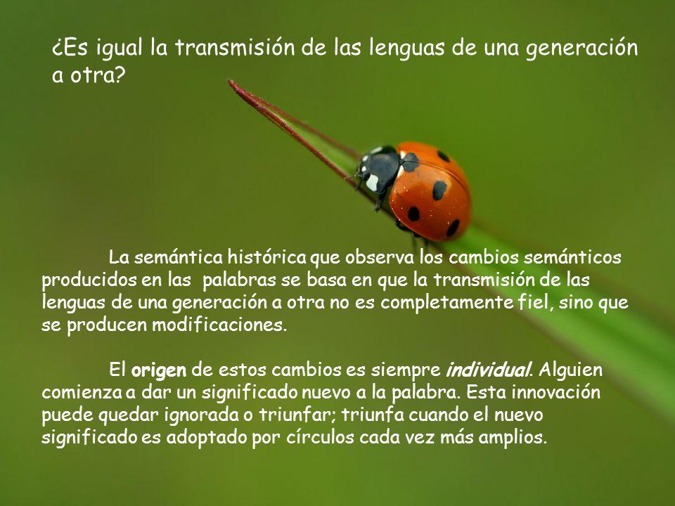 ¿Es igual la transmisión de las lenguas de una generación a otra.