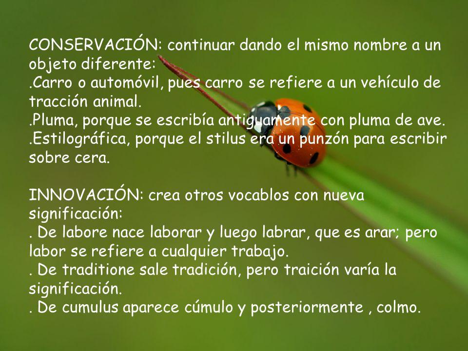 CONSERVACIÓN: continuar dando el mismo nombre a un objeto diferente:.Carro o automóvil, pues carro se refiere a un vehículo de tracción animal..Pluma,