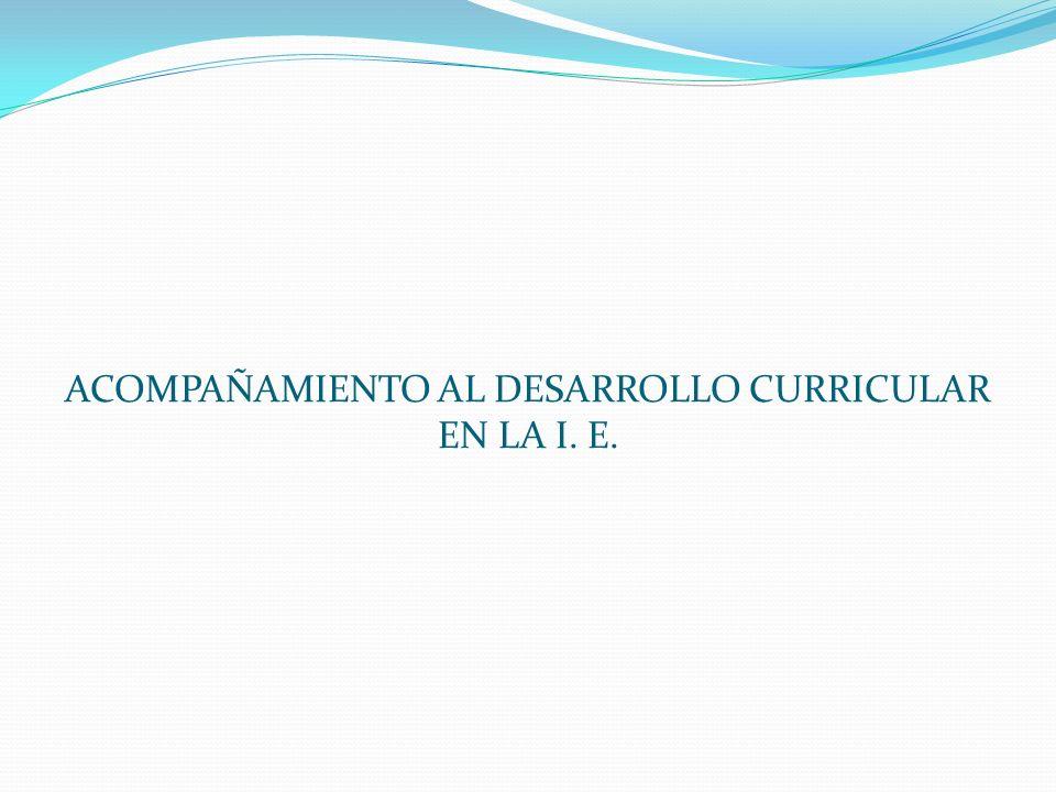ACOMPAÑAMIENTO AL DESARROLLO CURRICULAR EN LA I. E.