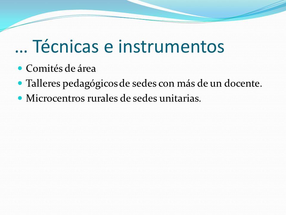 … Técnicas e instrumentos Comités de área Talleres pedagógicos de sedes con más de un docente. Microcentros rurales de sedes unitarias.