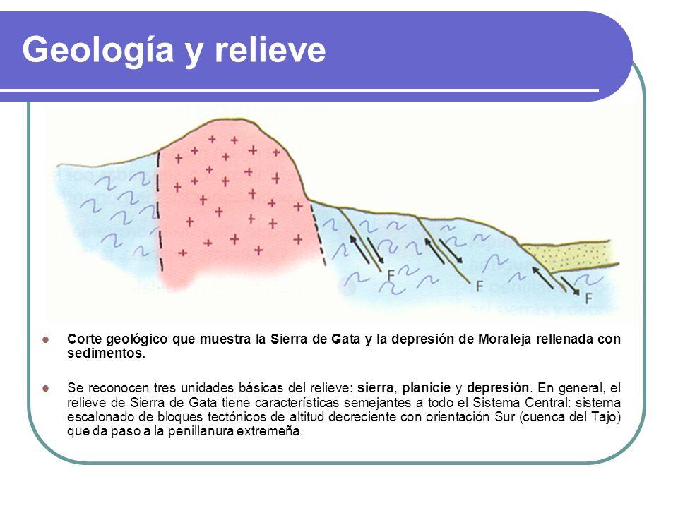 Geología y relieve Corte geológico que muestra la Sierra de Gata y la depresión de Moraleja rellenada con sedimentos. Se reconocen tres unidades básic