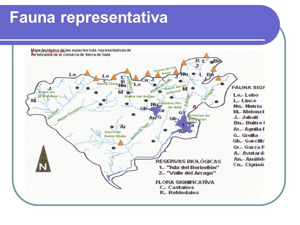 Actividades y cuestiones Ayudándote de los dibujos, ¿qué factores han conformado el relieve actual de la comarca de Sierra de Gata.