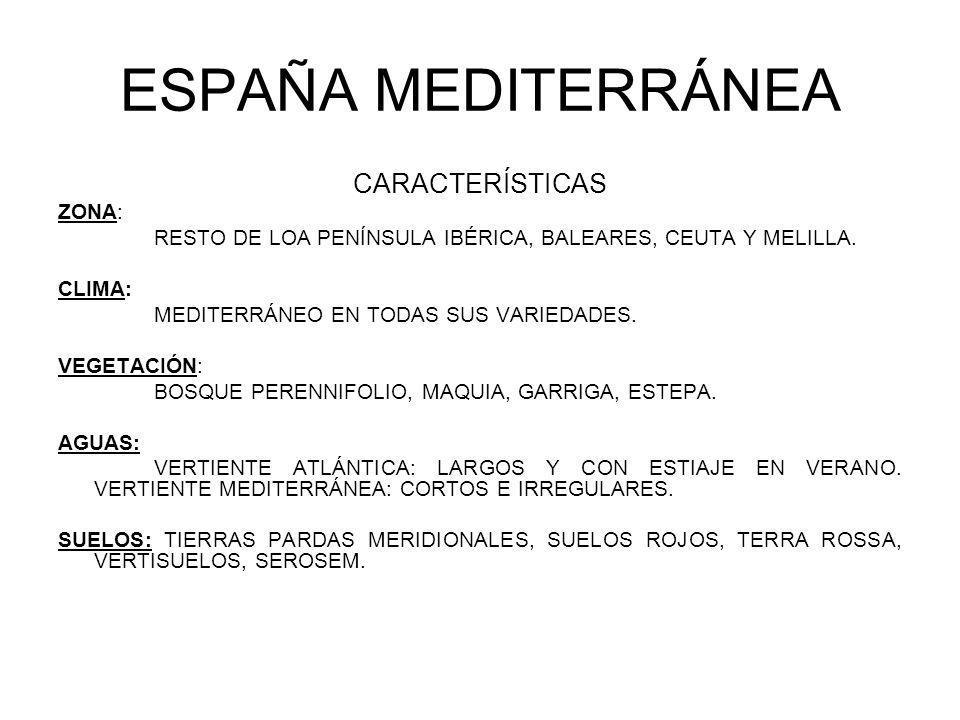 ESPAÑA MEDITERRÁNEA CARACTERÍSTICAS ZONA: RESTO DE LOA PENÍNSULA IBÉRICA, BALEARES, CEUTA Y MELILLA. CLIMA: MEDITERRÁNEO EN TODAS SUS VARIEDADES. VEGE