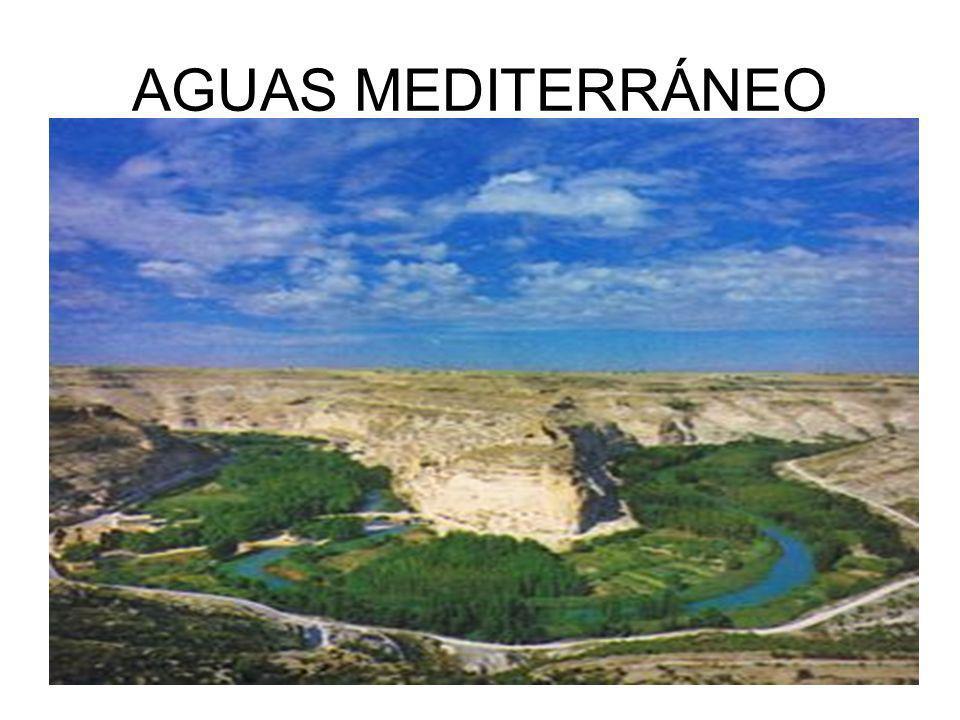 AGUAS MEDITERRÁNEO