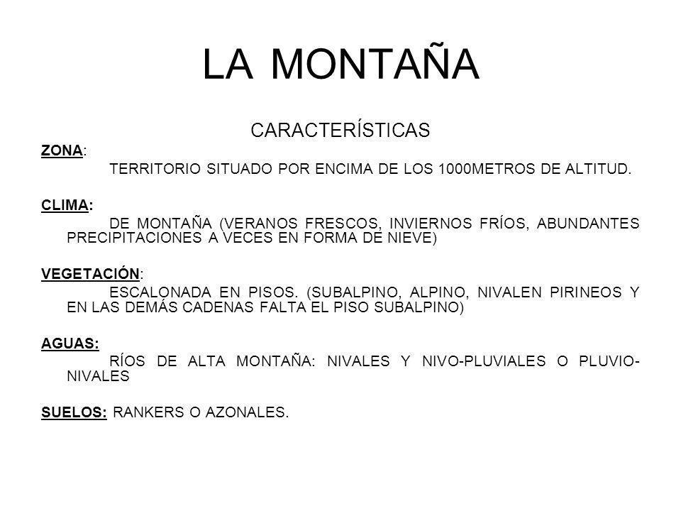 LAMONTAÑA CARACTERÍSTICAS ZONA: TERRITORIO SITUADO POR ENCIMA DE LOS 1000METROS DE ALTITUD. CLIMA: DE MONTAÑA (VERANOS FRESCOS, INVIERNOS FRÍOS, ABUND