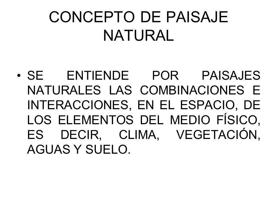 ELEMENTOS FÍSICOS DE LOS PAISAJES NATURALES