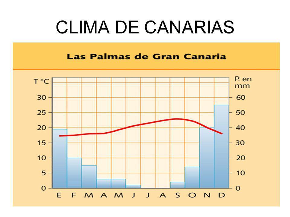 CLIMA DE CANARIAS