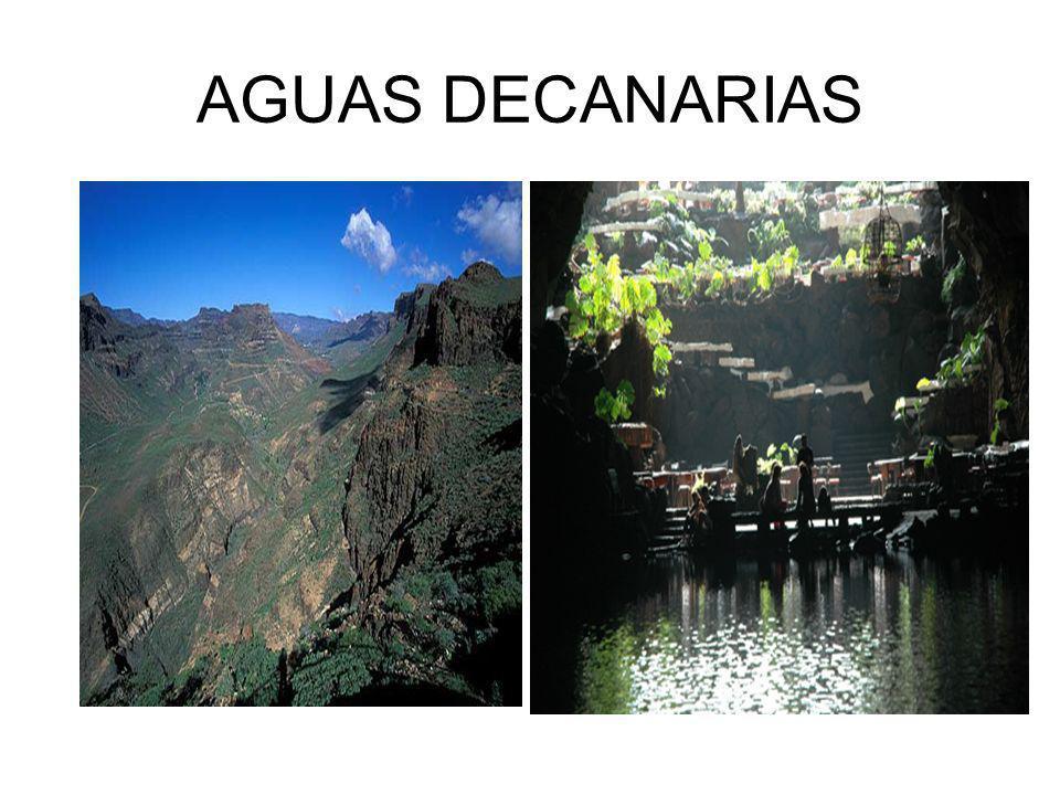 AGUAS DECANARIAS