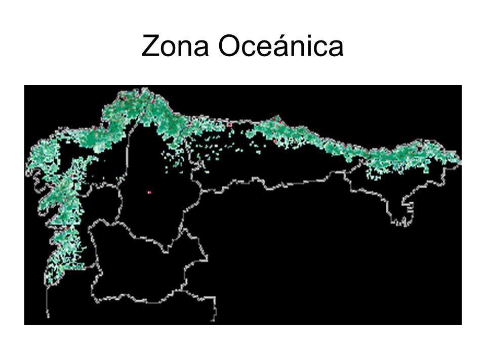 LAMONTAÑA CARACTERÍSTICAS ZONA: TERRITORIO SITUADO POR ENCIMA DE LOS 1000METROS DE ALTITUD.