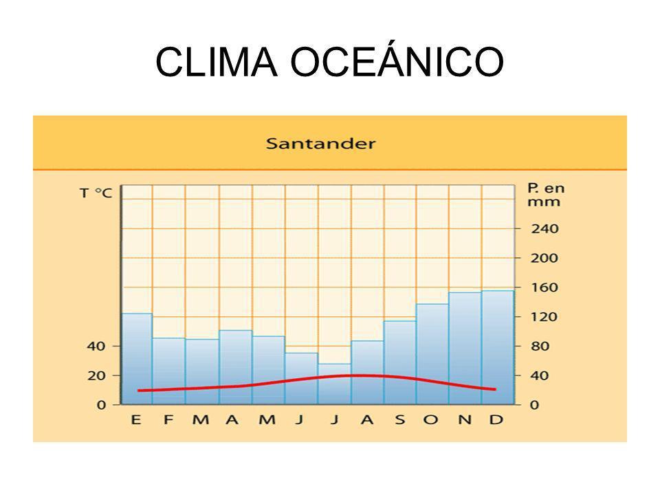 VEGETACIÓN OCEÁNICA