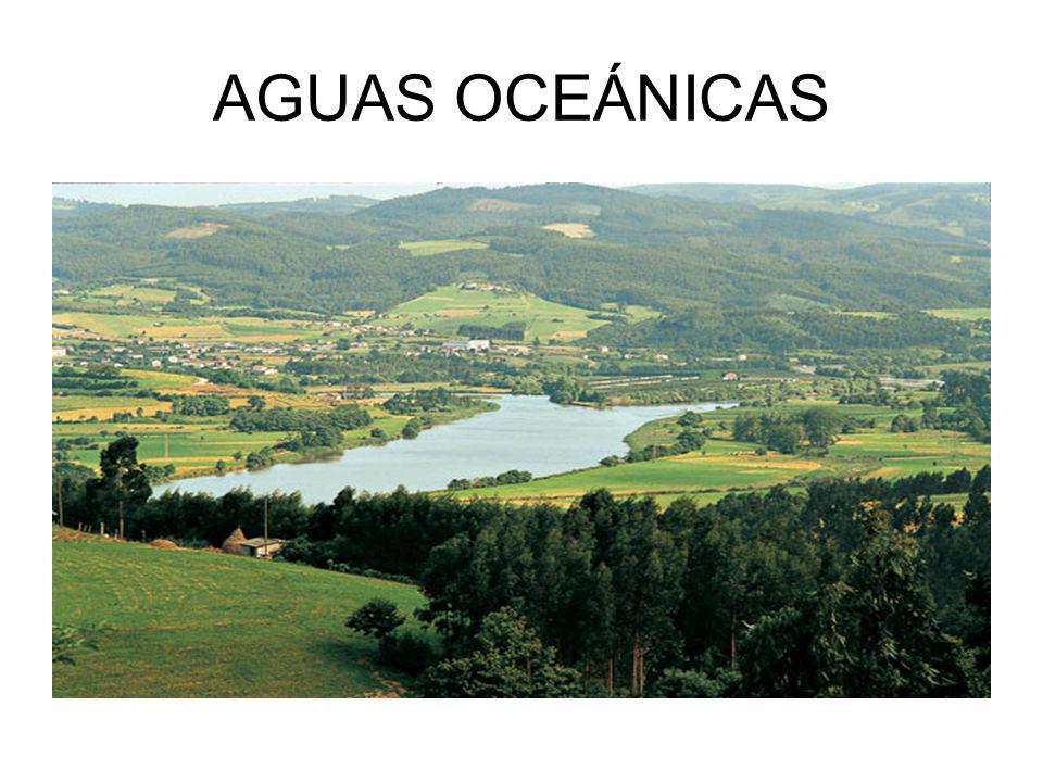 AGUAS OCEÁNICAS