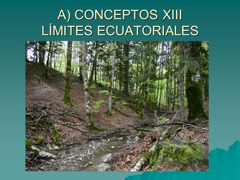 A) CONCEPTOS XIII LÍMITES ECUATORIALES