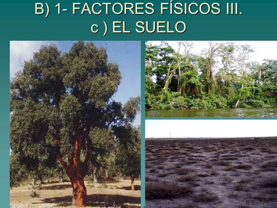 B) 1- FACTORES FÍSICOS III. c ) EL SUELO