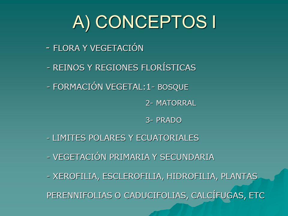 A) CONCEPTOS I - FLORA Y VEGETACIÓN - FLORA Y VEGETACIÓN - REINOS Y REGIONES FLORÍSTICAS - FORMACIÓN VEGETAL:1- BOSQUE 2- MATORRAL 2- MATORRAL 3- PRAD