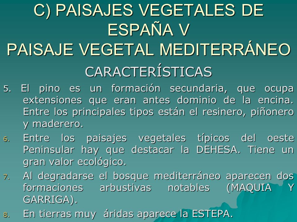 C) PAISAJES VEGETALES DE ESPAÑA V PAISAJE VEGETAL MEDITERRÁNEO CARACTERÍSTICAS 5. El pino es un formación secundaria, que ocupa extensiones que eran a