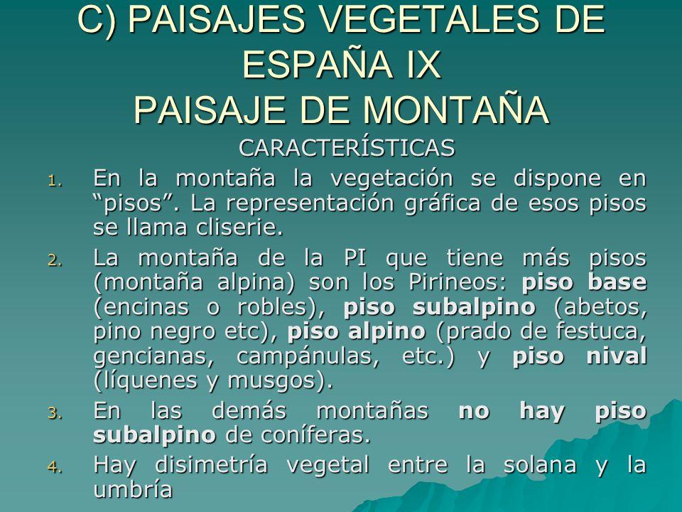 C) PAISAJES VEGETALES DE ESPAÑA IX PAISAJE DE MONTAÑA CARACTERÍSTICAS 1. En la montaña la vegetación se dispone en pisos. La representación gráfica de