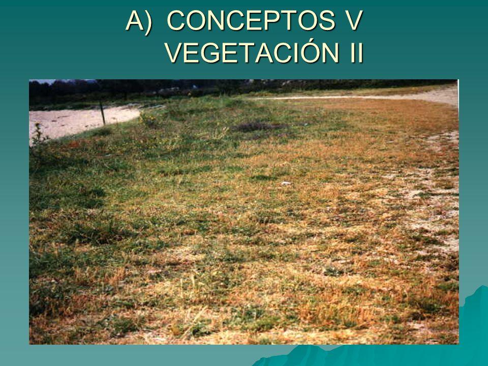 B) 2- FACTORES HUMANOS I a) INTRODUCCIÓN DE NUEVAS ESPECIES Y REFORESTACIÓN