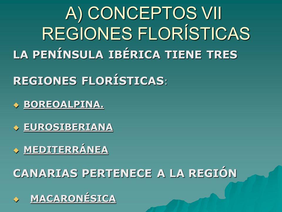 A) CONCEPTOS VII REGIONES FLORÍSTICAS LA PENÍNSULA IBÉRICA TIENE TRES REGIONES FLORÍSTICAS : BOREOALPINA. BOREOALPINA. EUROSIBERIANA EUROSIBERIANA MED