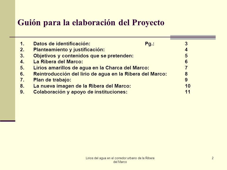 Lirios del agua en el corredor urbano de la Ribera del Marco 2 Guión para la elaboración del Proyecto 1.Datos de identificación:Pg.:3 2.Planteamiento