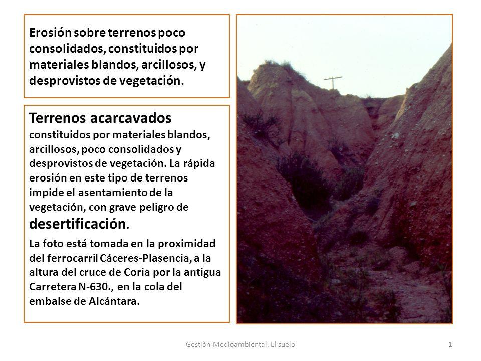 Erosión sobre terrenos poco consolidados, constituidos por materiales blandos, arcillosos, y desprovistos de vegetación.