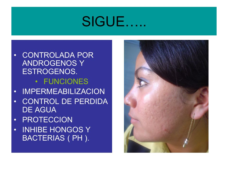 SIGUE….. CONTROLADA POR ANDROGENOS Y ESTROGENOS. FUNCIONES IMPERMEABILIZACION CONTROL DE PERDIDA DE AGUA PROTECCION INHIBE HONGOS Y BACTERIAS ( PH ).