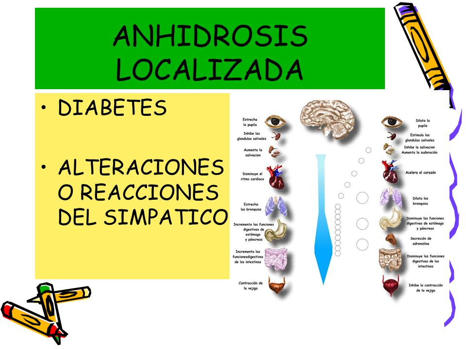 ANHIDROSIS LOCALIZADA DIABETES ALTERACIONES O REACCIONES DEL SIMPATICO