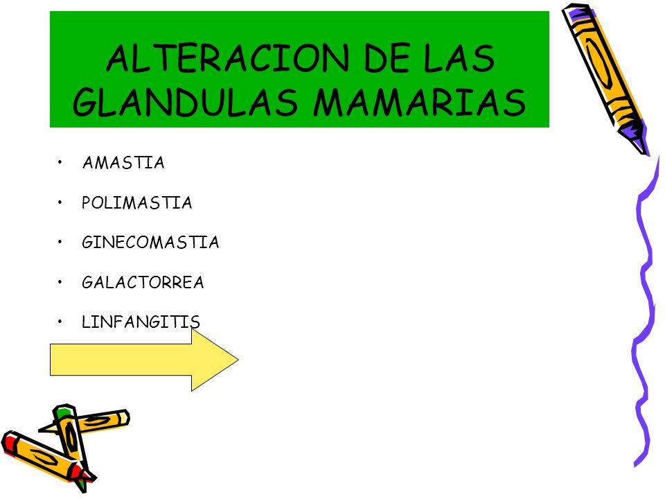 ALTERACION DE LAS GLANDULAS MAMARIAS AMASTIA POLIMASTIA GINECOMASTIA GALACTORREA LINFANGITIS MASTITTIS