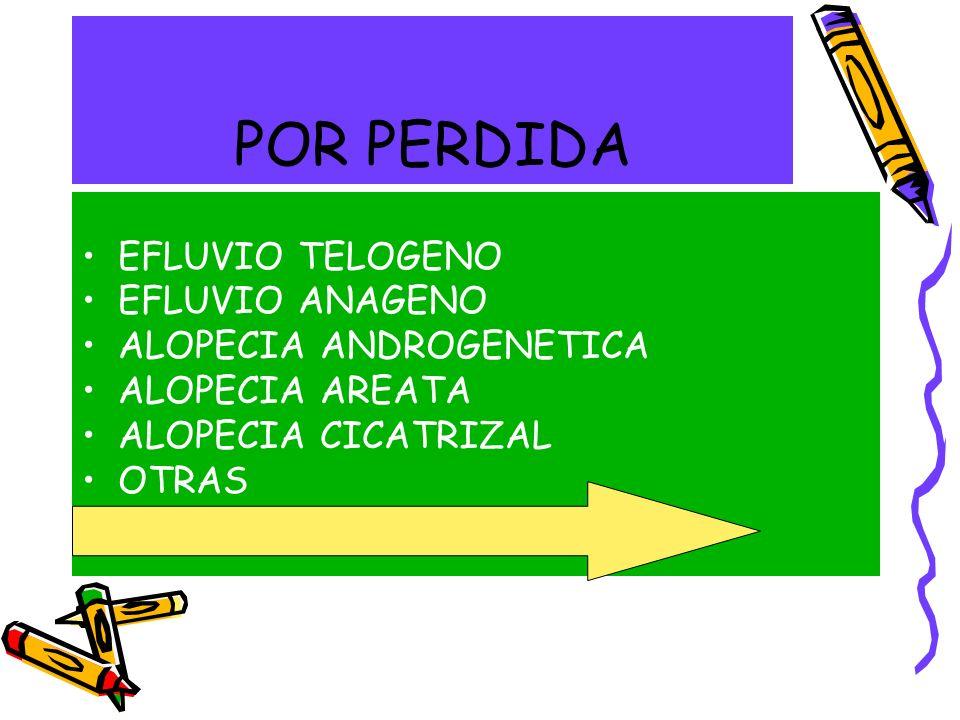 POR PERDIDA EFLUVIO TELOGENO EFLUVIO ANAGENO ALOPECIA ANDROGENETICA ALOPECIA AREATA ALOPECIA CICATRIZAL OTRAS DEFECTOS ESTRUCTURALES
