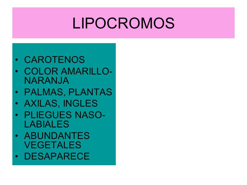 LIPOCROMOS CAROTENOS COLOR AMARILLO- NARANJA PALMAS, PLANTAS AXILAS, INGLES PLIEGUES NASO- LABIALES ABUNDANTES VEGETALES DESAPARECE