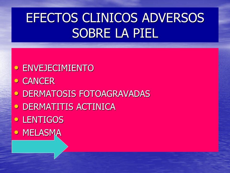 EFECTOS CLINICOS ADVERSOS SOBRE LA PIEL ENVEJECIMIENTO ENVEJECIMIENTO CANCER CANCER DERMATOSIS FOTOAGRAVADAS DERMATOSIS FOTOAGRAVADAS DERMATITIS ACTIN