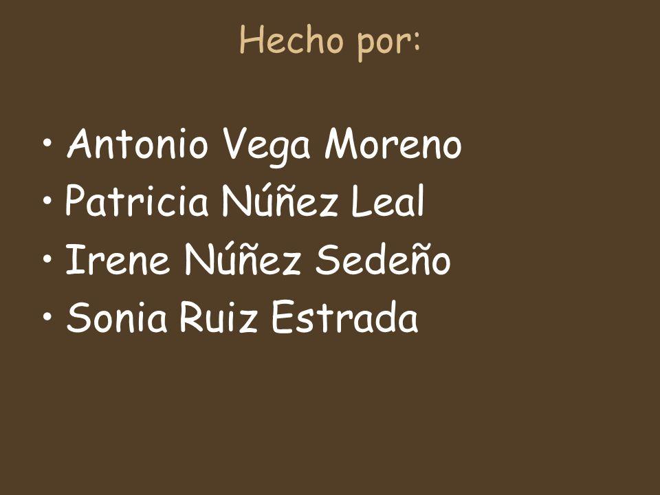 Hecho por: Antonio Vega Moreno Patricia Núñez Leal Irene Núñez Sedeño Sonia Ruiz Estrada