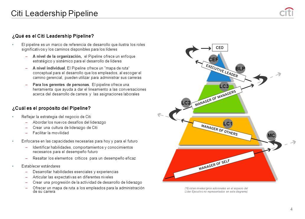 Citi Leadership Series 3 El Citi Leadership Series, o curriculum base, toma como punto de partida la experiencia de desarrollo de liderazgo de Citi, asegurando que los empleados desarrollen las habilidades, valores y comportamientos necesarios para tener éxito en los momentos críticos de su carrera.