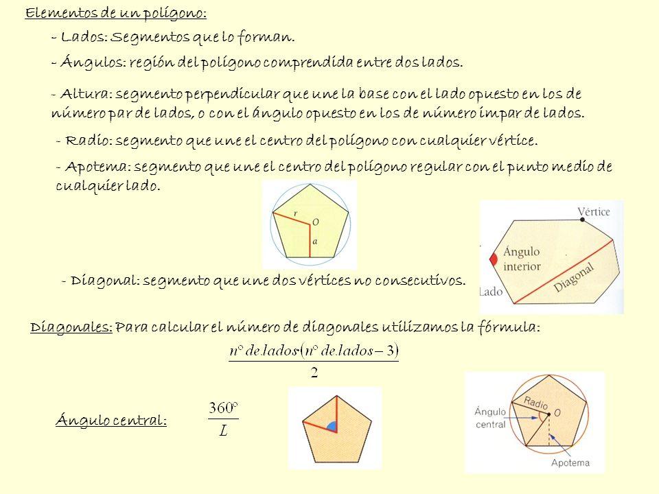 - Lados: Segmentos que lo forman. - Ángulos: región del polígono comprendida entre dos lados. - Altura: segmento perpendicular que une la base con el
