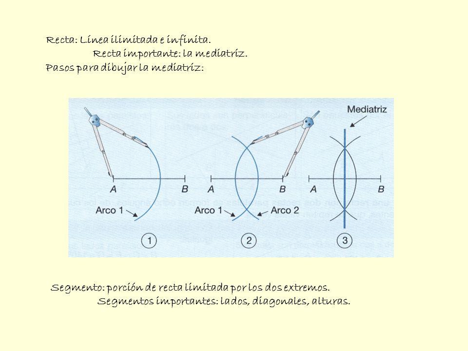 Recta: Línea ilimitada e infinita. Recta importante: la mediatriz. Pasos para dibujar la mediatriz: Segmento: porción de recta limitada por los dos ex