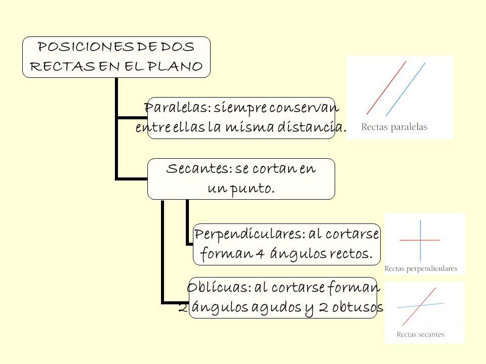 POSICIONES DE DOS RECTAS EN EL PLANO Paralelas: siempre conservan entre ellas la misma distancia. Secantes: se cortan en un punto. Perpendiculares: al