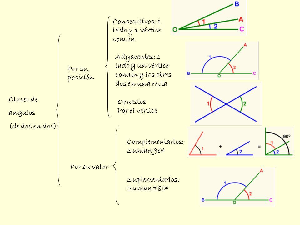 Semirrecta: línea recta limitada por un extremo e infinita por el otro.