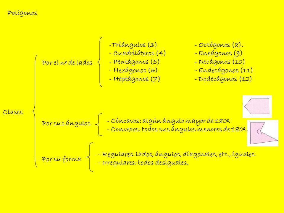 - Lados: Segmentos que lo forman.- Ángulos: región del polígono comprendida entre dos lados.