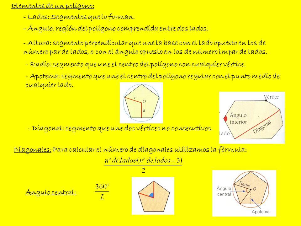 - Lados: Segmentos que lo forman. - Ángulo: región del polígono comprendida entre dos lados. - Altura: segmento perpendicular que une la base con el l
