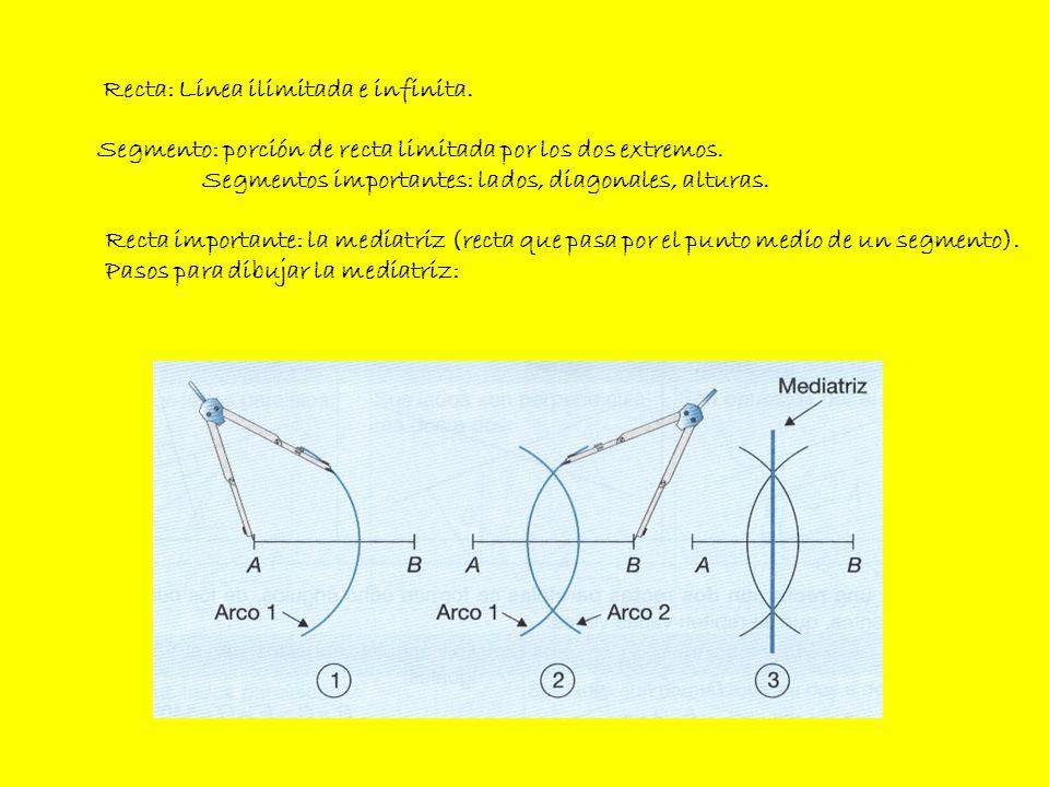 Recta: Línea ilimitada e infinita. Segmento: porción de recta limitada por los dos extremos. Segmentos importantes: lados, diagonales, alturas. Recta