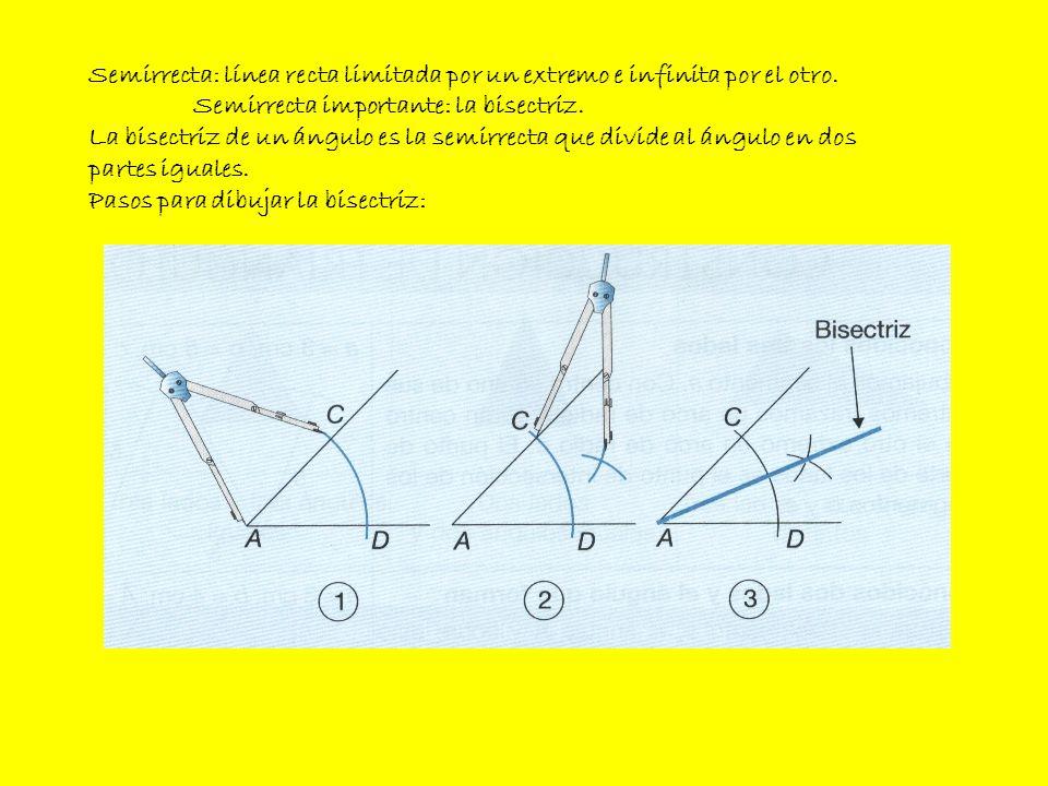 Semirrecta: línea recta limitada por un extremo e infinita por el otro. Semirrecta importante: la bisectriz. La bisectriz de un ángulo es la semirrect