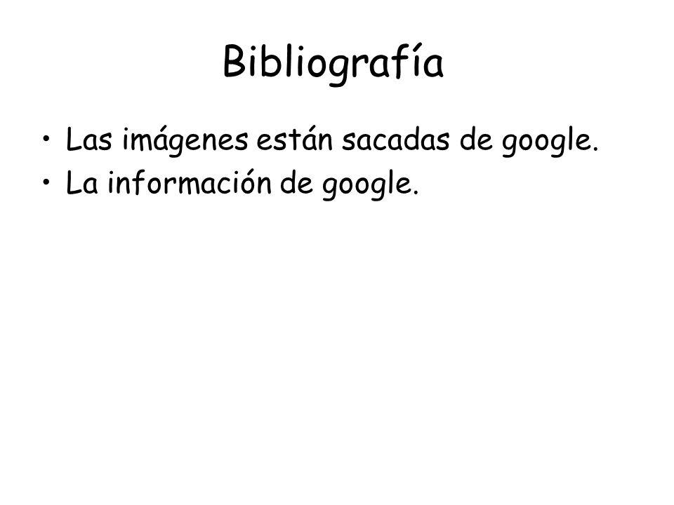 Bibliografía Las imágenes están sacadas de google. La información de google.