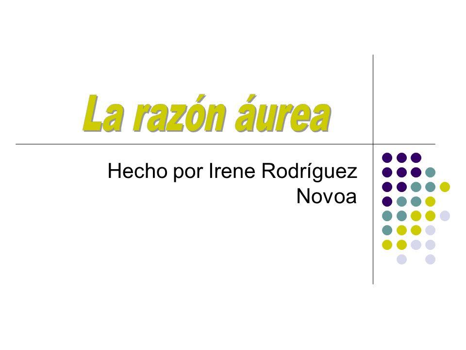 Hecho por Irene Rodríguez Novoa