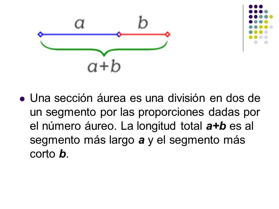 Una sección áurea es una división en dos de un segmento por las proporciones dadas por el número áureo. La longitud total a+b es al segmento más largo