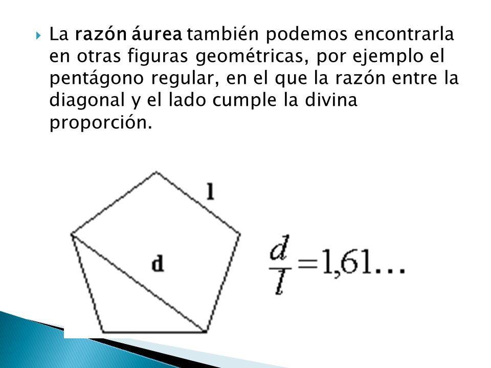 La razón áurea también podemos encontrarla en otras figuras geométricas, por ejemplo el pentágono regular, en el que la razón entre la diagonal y el l