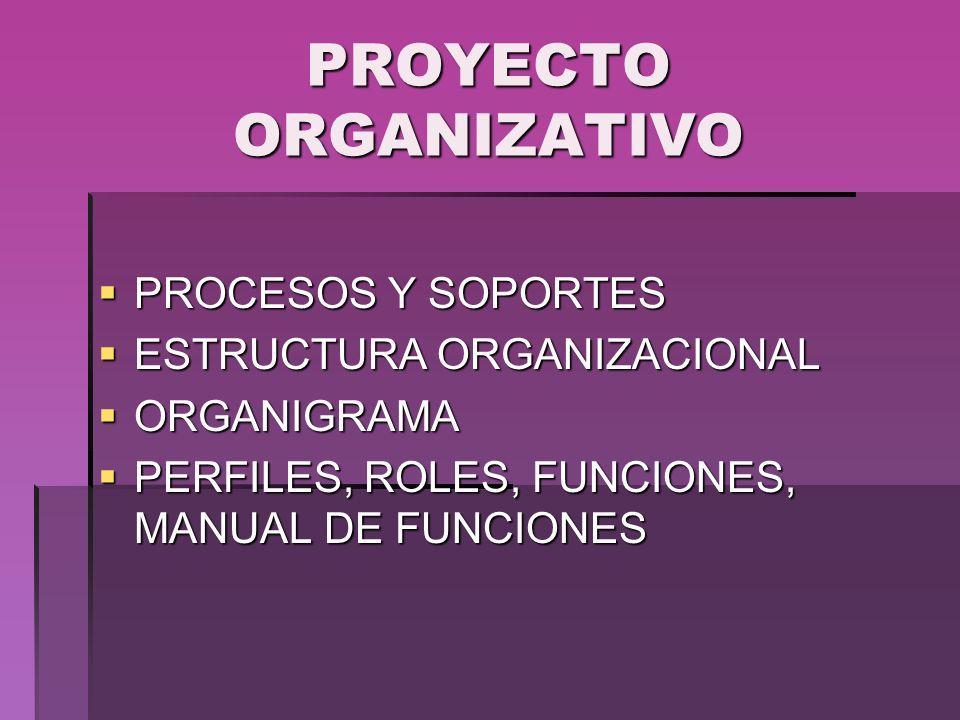 PROYECTO ORGANIZATIVO PROCESOS Y SOPORTES PROCESOS Y SOPORTES ESTRUCTURA ORGANIZACIONAL ESTRUCTURA ORGANIZACIONAL ORGANIGRAMA ORGANIGRAMA PERFILES, RO