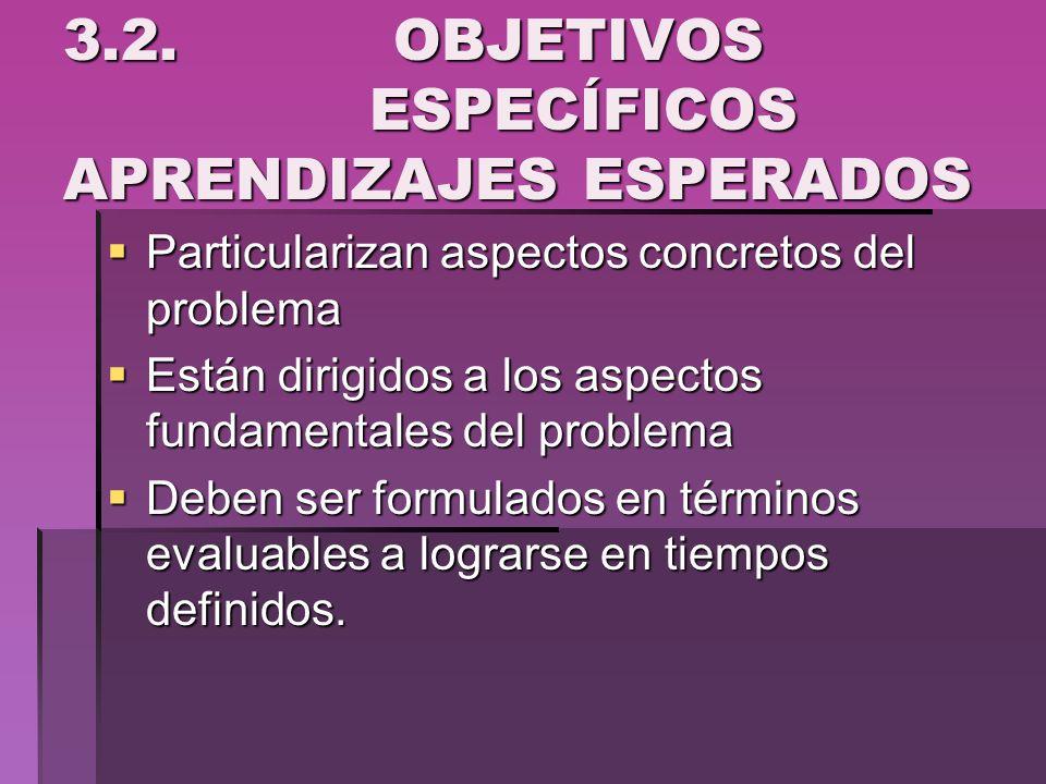 3.2. OBJETIVOS ESPECÍFICOS APRENDIZAJES ESPERADOS Particularizan aspectos concretos del problema Particularizan aspectos concretos del problema Están
